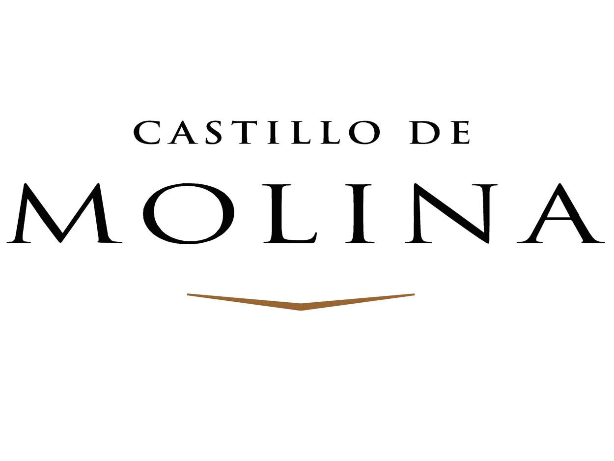 Castillo_Molina_logo castillo de molinasauvignon blanc Vino Tinto Castillo de MolinaSauvignon Blanc 2012 Castillo Molina logo