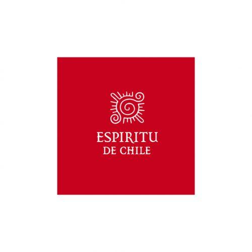 Themina (El Vigía) Espiritu Chile logo 500x500